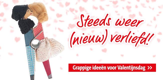 Grappige idee�n voor Valentijnsdag