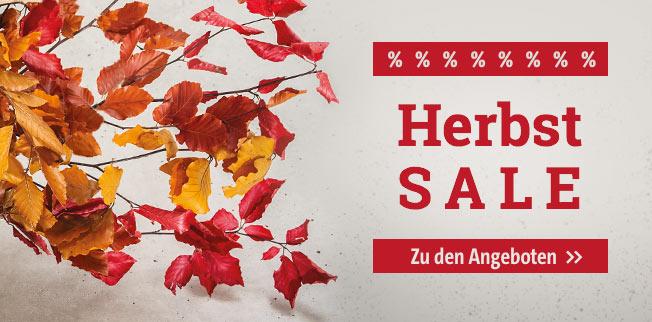 Herbst-SALE!