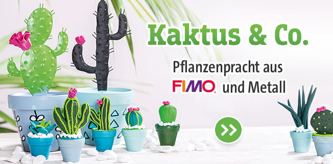Kaktus & Co.