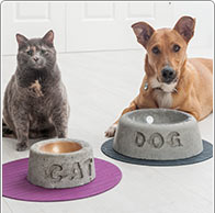 Instruction: Concrete Pet Bowls