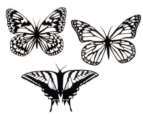 papillons en carton d coup au laser opitec. Black Bedroom Furniture Sets. Home Design Ideas