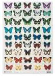 Découpage papier 'vlinders', 35 x 50 cm, 1 vel