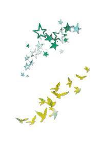Sizzix® Thinlits[TM] Die 2 PK - Birds and Stars