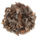 Plumes de dindon, naturel/marron, 10 g