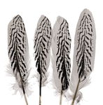 Goose Feathers - Zebra Pattern, 4 pieces