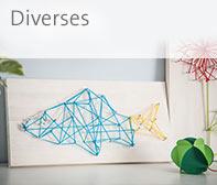 Creative_Diverse