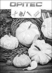 Bastelanleitungen zu Herbst-Prospekt 2016