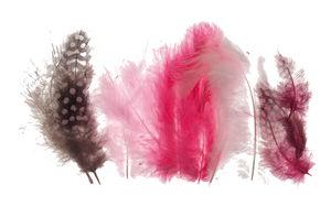 Marabou/parelhoen veren, 18 stuks, roze mix