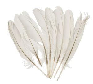 Ganzenveren, wit (16 - 20 cm) 8 stuks