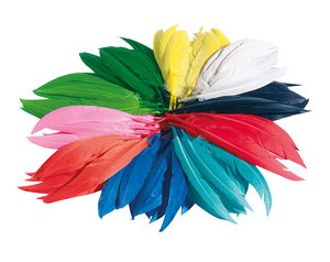 Indianen veren, kleurrijk, 100 g/ca. 400 stuks