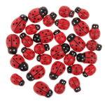 Houten lieveheersbeestjes, 30 stuks