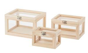 Houten kistjes met glazen inzet, 3 stuks