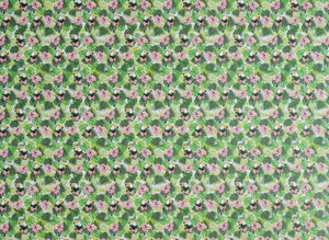 Motiv-Fotokarton Papagei (49,5 x 68 cm)