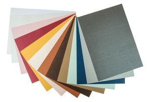 Karton - parelmoer (25 x 35 cm) kleurrijk, 13 vel