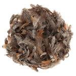 Plumas de pavo de color natural y marrón, 10 g