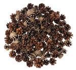 Kiefernzapfen, 125 Stück natur