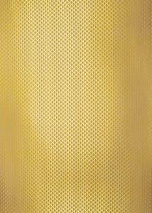 Glitzerkarton, 5 Bogen Schuppen gold (50 x 70 cm)