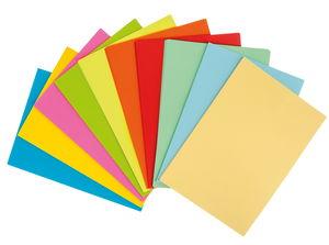 Kopieerpapier (A4) kleurrijk gesorteerd, 250 vel