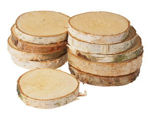 Berken schijven (ca. ø 70-120 mm) 10 stuks