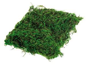 Muschio decorativo, ca. 20g, verde