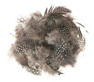 Parelhoen veren assortiment (4 g)