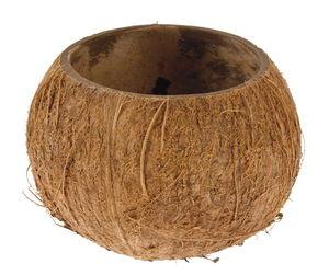 Coco Nut, natur (11,5 x 9,5 cm)