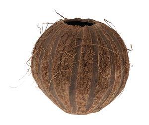 Coco Nut Stripes, 2 Bohrungen (9 cm)