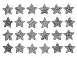Birkenrinden-Sterne, 24 Stück weiß (3 cm)