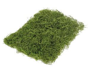 Jungle gras, 60 g, lentegroen