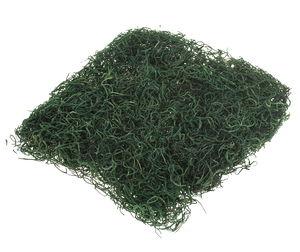 Mousse, env. 60 g, vert feuilles