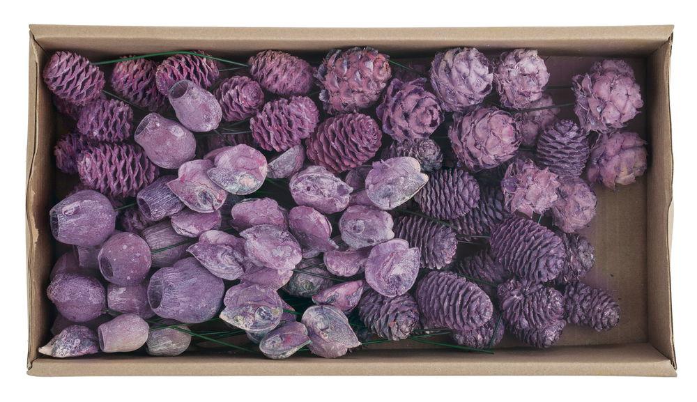 Christbaumkugeln Brombeer.186123 Trockenblumen Leucodendron Mix